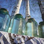 Березовый сок – как консервировать