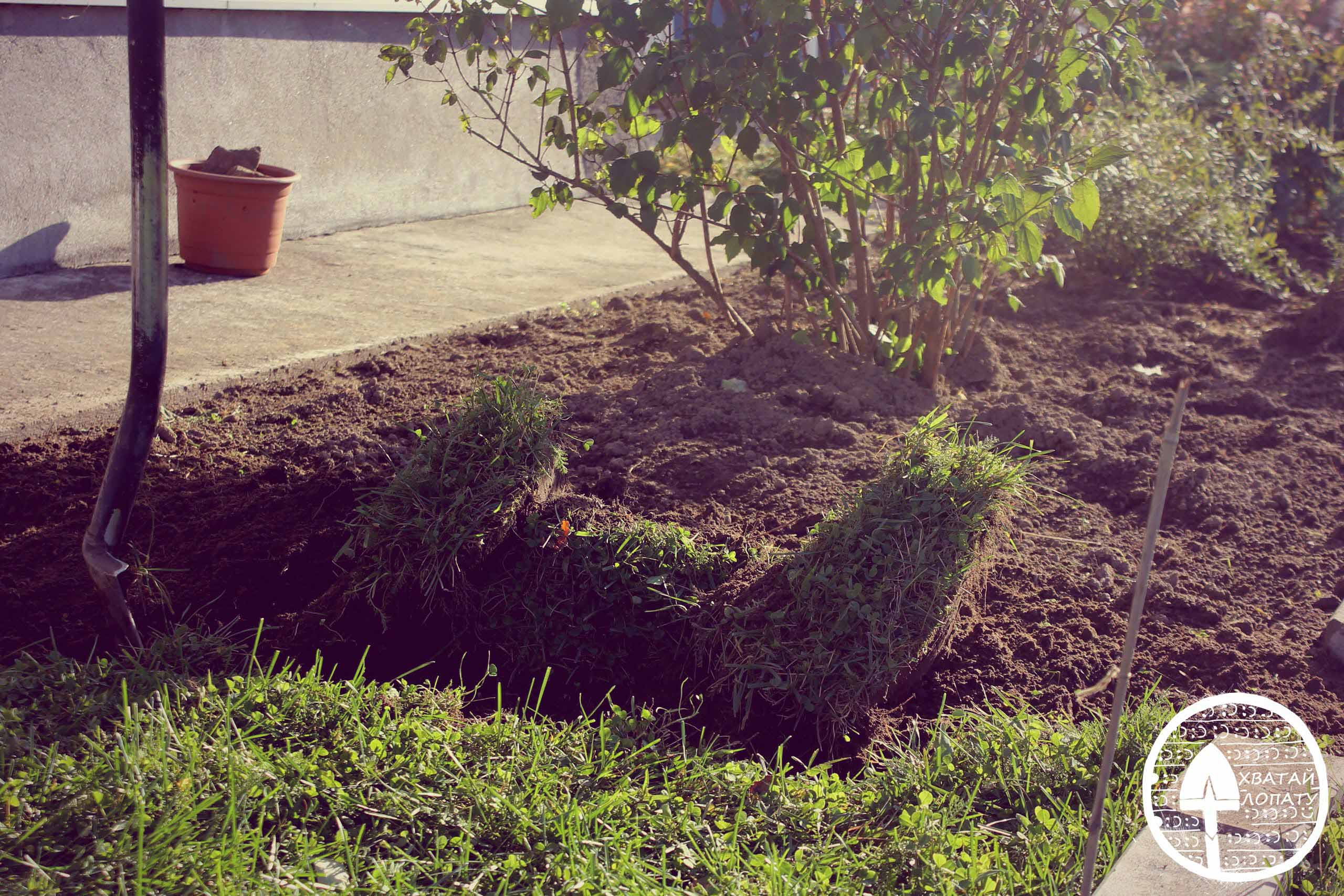 копать почву в саду